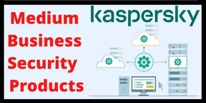 Medium Business Security Products
