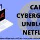 Can CyberGhost Unblock Netflix www.softwaresb.com